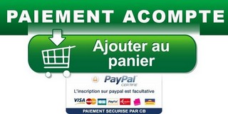 Bouton VERT Acompte paypal
